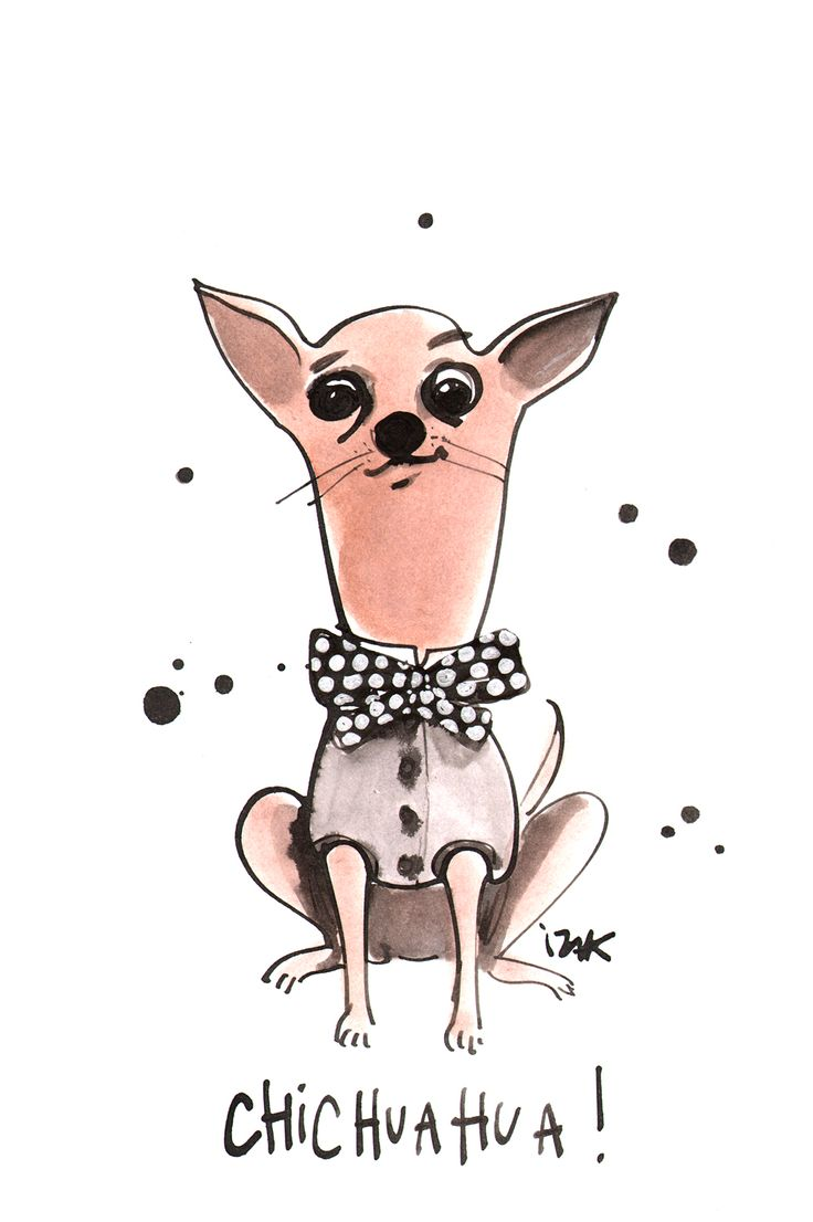 A very chic chihuahua #izakzenou #izak #trafficnyc #illustration #dogs.  Animal IllustrationsArt DesignsWall ArtDrawingPaintingCutest ...