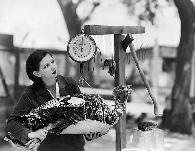 Comedienne Patsy Kelly Weighing Her Thanksgiving Turkey