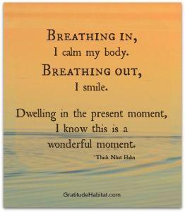 Je ademhaling kun je altijd als anker gebruiken op het moment dat je terug wilt naar het hier en nu. Merk je dat je gestrest bent, wil je teveel tegelijk, voel je je niet meer geaard? Doe dan deze oefening. http://www.serenitycoaching.nl/gratis/ademoefening/
