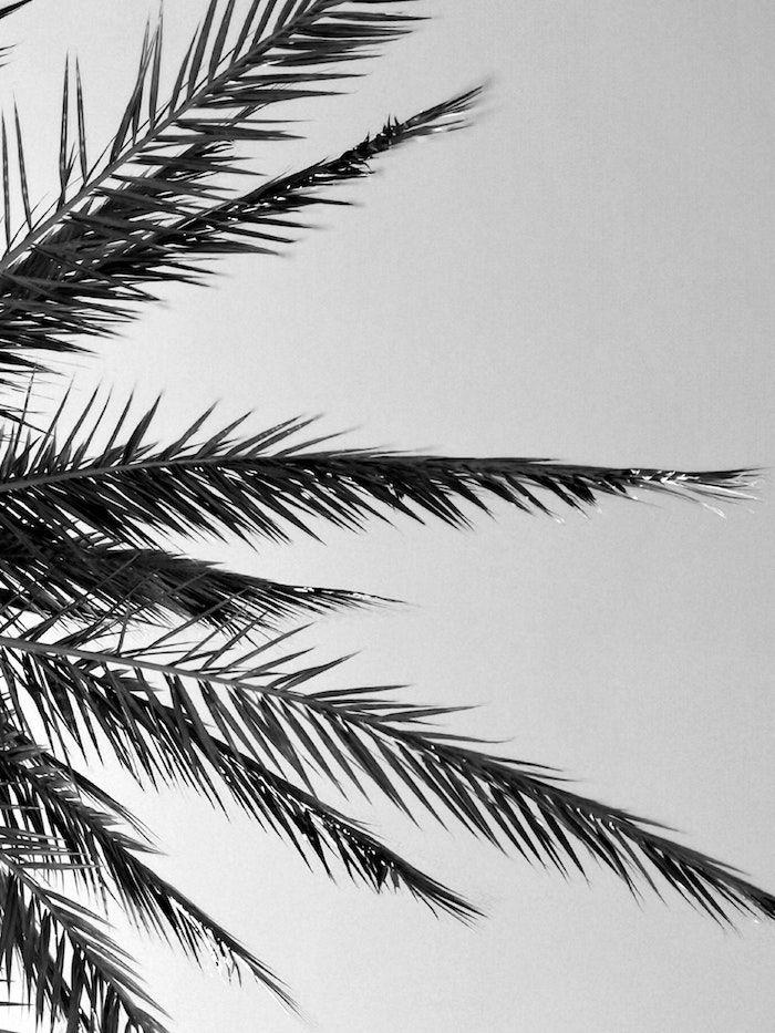1001 Photos Pour Un Fond D Ecran Noir Et Blanc Parfait Pour Vous En 2020 Paysage Noir Et Blanc Fond D Ecran Noir Et Blanc Noir Et Blanc