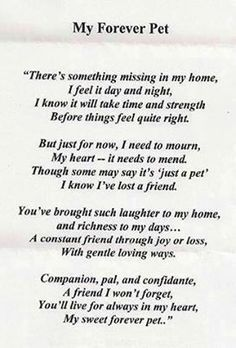 Losing a pet is losing a family member.