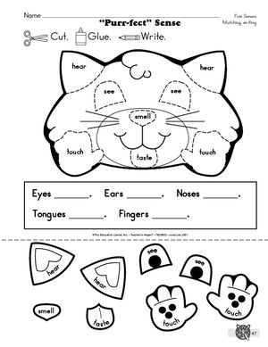 5 senses labeling worksheet student reproducible school stuff five senses kindergarten. Black Bedroom Furniture Sets. Home Design Ideas