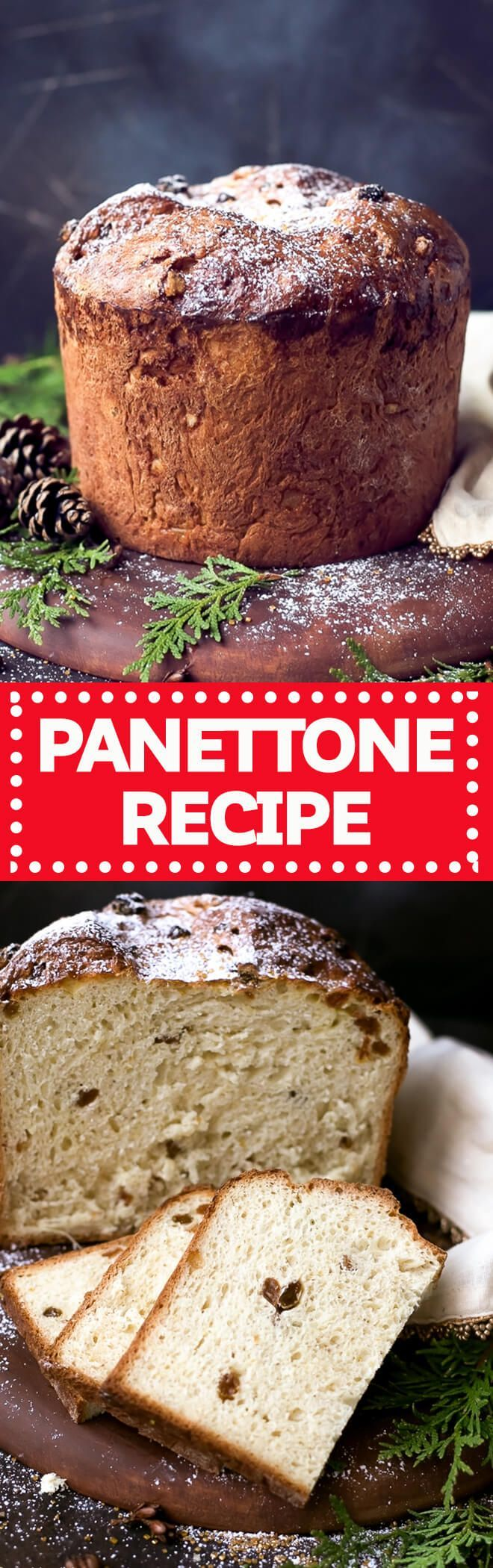 Easy Homemade Italian Christmas Bread Panettone Recipe - perfect for the holidays! This Panettone Recipe does require some planning, but if you follow my instructions, you'll end up with a sweet, puffy and festive holiday bread. via @cookinglsl