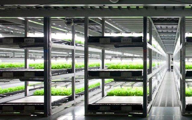 Το πρώτο πλήρως αυτοματοποιημένο αγρόκτημα του κόσμου στην Ιαπωνία | naftemporiki.gr