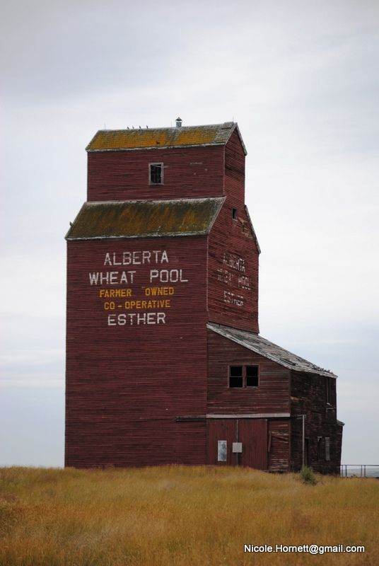 Another beauty of a Grain Elevator, in Esther, #Alberta.  #GrainElevator #Canada