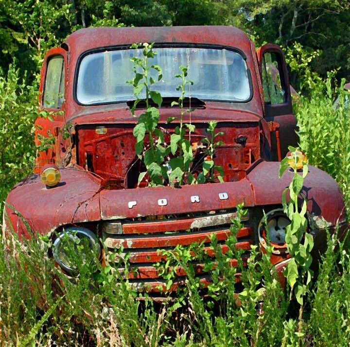 17 Best images about Rusty Old Ford Trucks on Pinterest ...