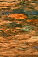 """""""Lake Superior Shallows I""""<br /> <br /> The perfect combination of waves, rocks, sunlight, and camera settings created this rich abstract of the shallows of Lake Superior near Tettegouche State Park."""