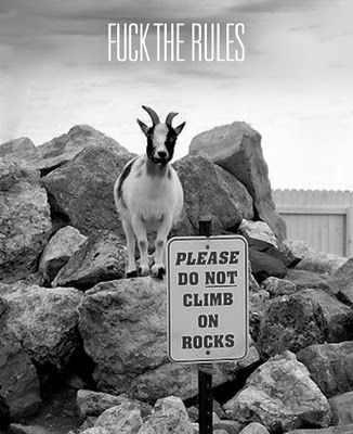 What of the many reasons I love goats!