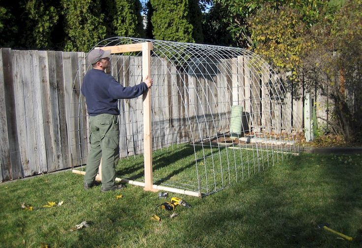 Build Your Own Pvc Greenhouse : Pinterest the world s catalog of ideas