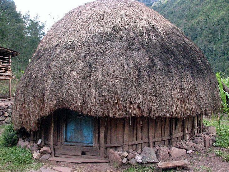 rumah-honai.jpg (Gambar JPEG Image, 800×600 piksel)