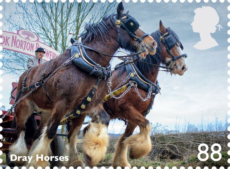 Launch Of Working Horses Stamp Collection | Post Office Shop Blog
