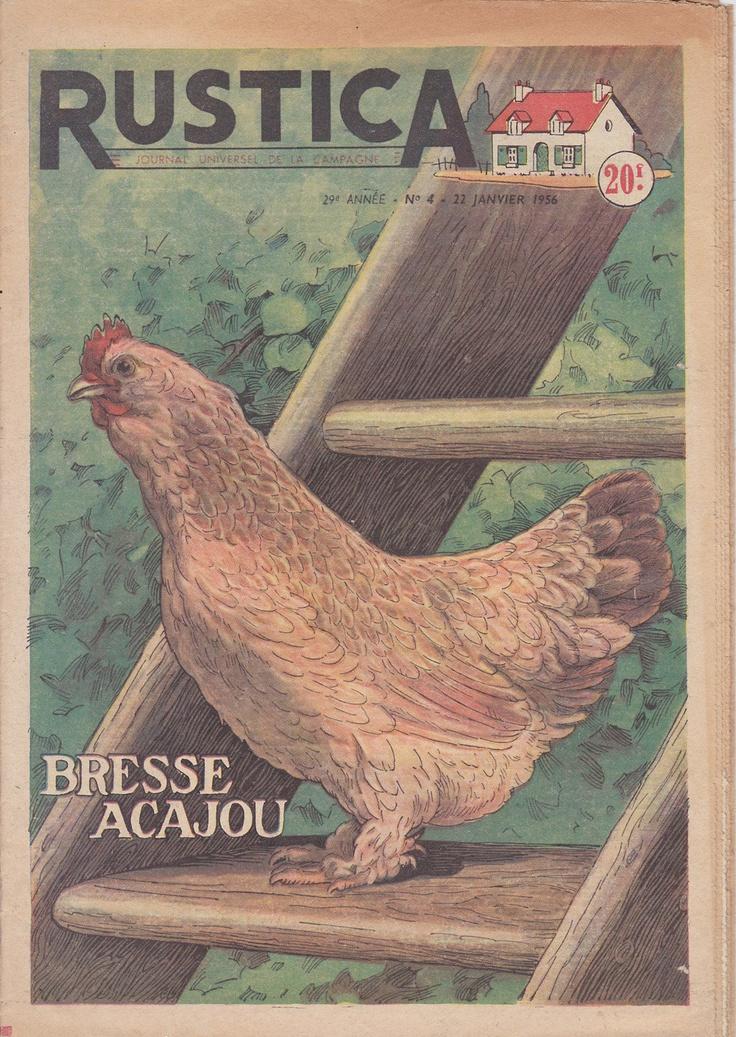 GARDENING and FARMING  MAGAZINE Vintage French. $15.00, via Etsy.