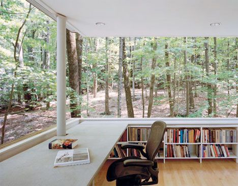 A library in the woods