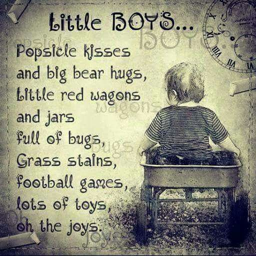 Image result for quotes on little boys funny