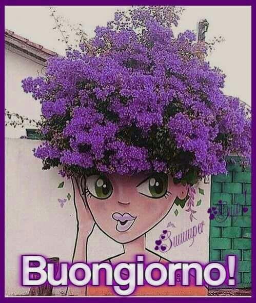 Buongiorno, fiori