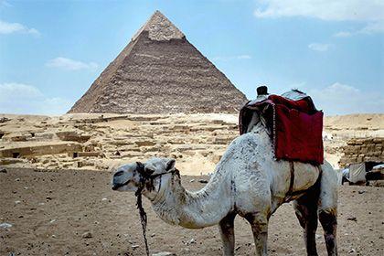 Турпоток в Египет упал почти вдвое http://mnogomerie.ru/2017/02/03/tyrpotok-v-egipet-ypal-pochti-vdvoe/  В 2016 году в Египте побывали в общей сложности 5,3 миллиона иностранных путешественников, что на 43 процента меньше, чем в 2015-м. Об этом пишет местная газета Daily News Egypt. Из-за падения турпотока количество машин, используемых для перевозки зарубежных гостей, сократилось почти в два раза, до 1,6 тысячи единиц техники. У многих туристических компаний Египта нет […]