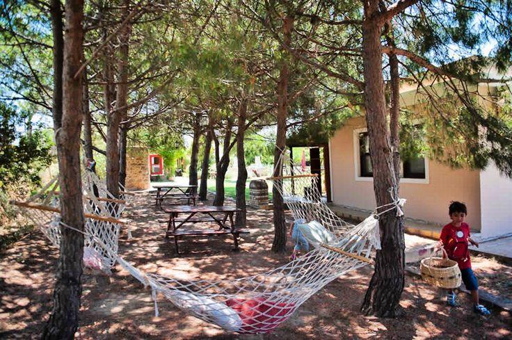 Bozcaada Aral Tatil Çiftliği, adanın en çocuk dostu oteli. Burada yalnız çocuklar değil, ebeveynler için de bu güzel hamaklar düşünülmüş☺☺☺ #bozcaada #aşktır #candır #bizim için. @araltatilciftligi kesinlikle gidin, kalın www.kucukoteller.com.tr/aral-tatil-ciftligi