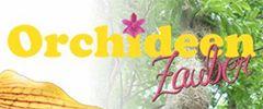 ORCHITOP – DAS INNOVATIVE KULTURSYSTEM FÜR ALLE ZIMMERORCHIDEEN - Orchitop® - DER Orchideen-Topf