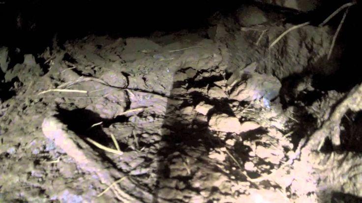 Metal Detecting Exposing a Hidden Tunnel Metal
