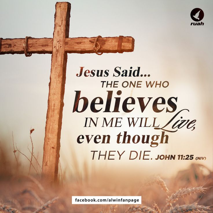 Quotes Of Jesus In The Bible: 1695 Best My Catholic Faith Images On Pinterest
