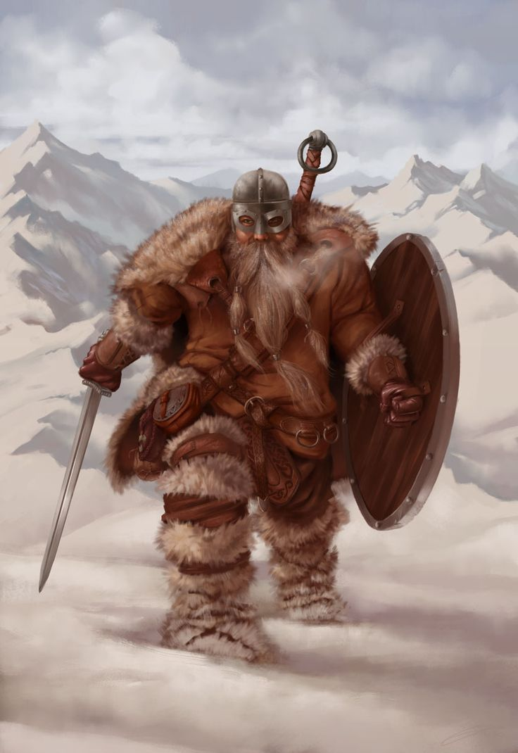 Dwarf with sword, shield, and helm in the snow.