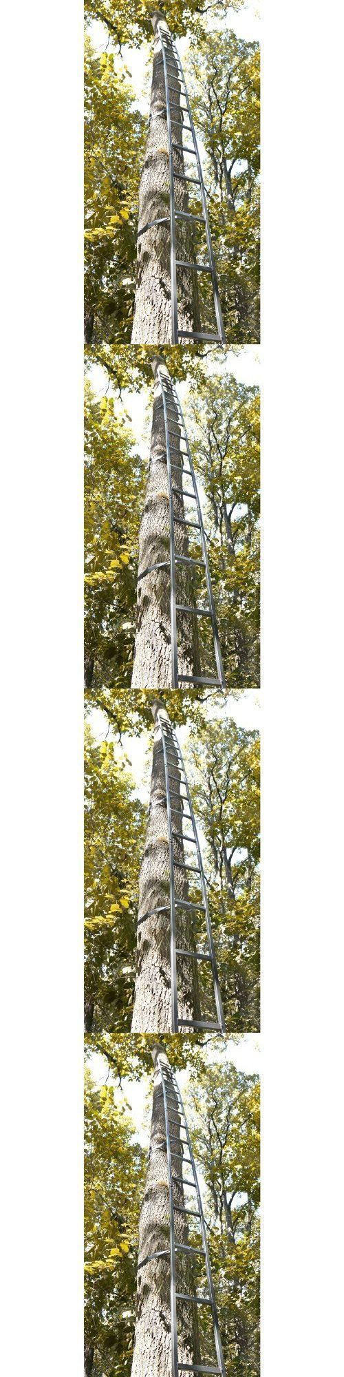 Best 25 ladder tree stands ideas on pinterest xmas tree for Climbing tree stand plans