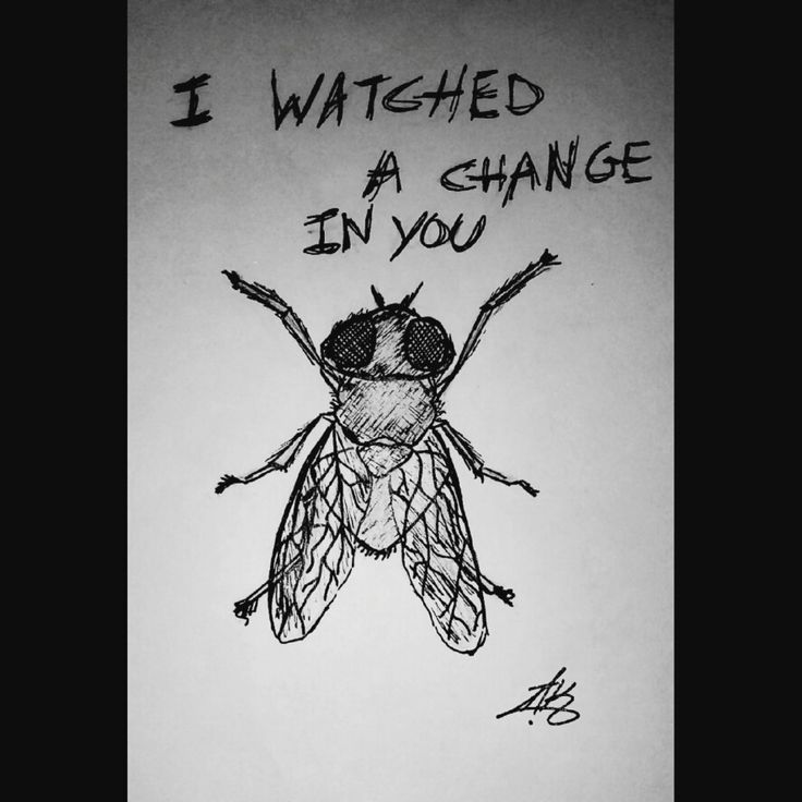 """""""I watched a change in you, it's like you never had wings..."""""""