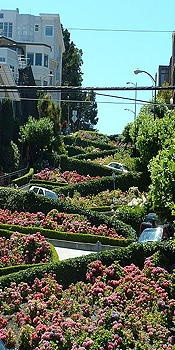 "tripYIP.com - ""Fun Things To Do!"" loves SAN FRANCISCO, CA:  LOMBARD STREET  The world's most crooked & curvy street.Napasan Fran"