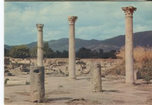 Tlemcen Postcard, Algerie: Les ruines d'Hippone