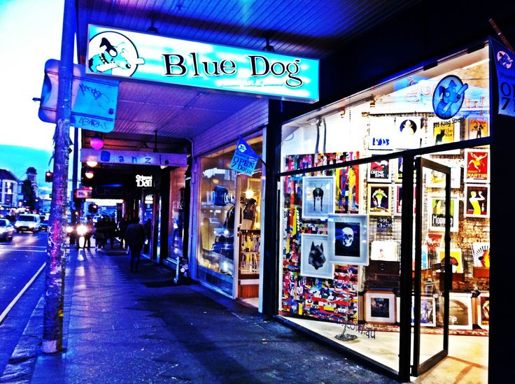 Shop Window at night. Blue Dog Posters, Newtown.