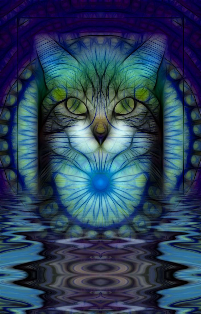 TabbyBeautiful Cat, Catart, Colors, Cat Artworks, Blue Cat, Crosses Stitches, Art History, Fractals, Stained Glasses