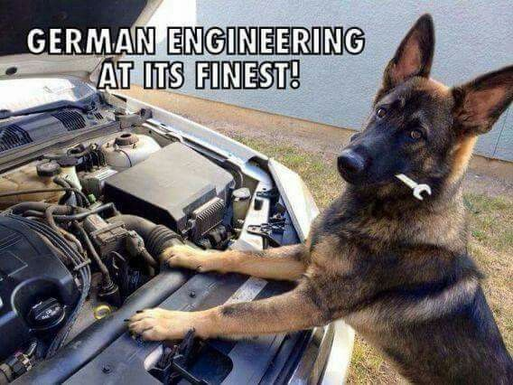 The car now drives itself to the dog park. Only the dog park... #dogs #doglovers #germanshepherd #gsd