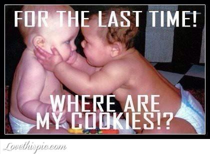 where are my cookies funny cute babies memes humor