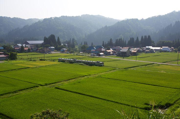 Summer 2013 (Kaneyama, Fukushima, JAPAN)