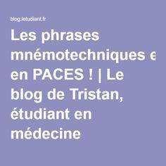 Les phrases mnémotechniques en PACES ! | Le blog de Tristan, étudiant en médecine