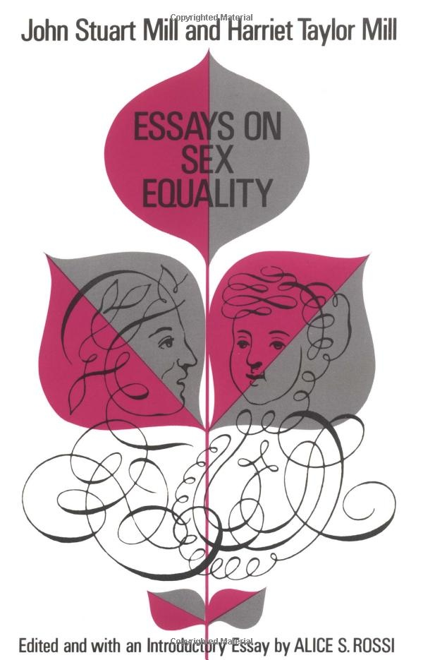 an essay that analyzes a work