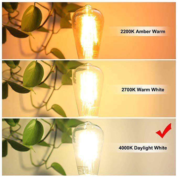 Led Edison Bulb 6w Vintage Light Bulb 60w Equivalent 800 Lumen 4000k Daylight White Non Dimmable Led Filam Vintage Light Bulbs Filament Bulb Vintage Lighting