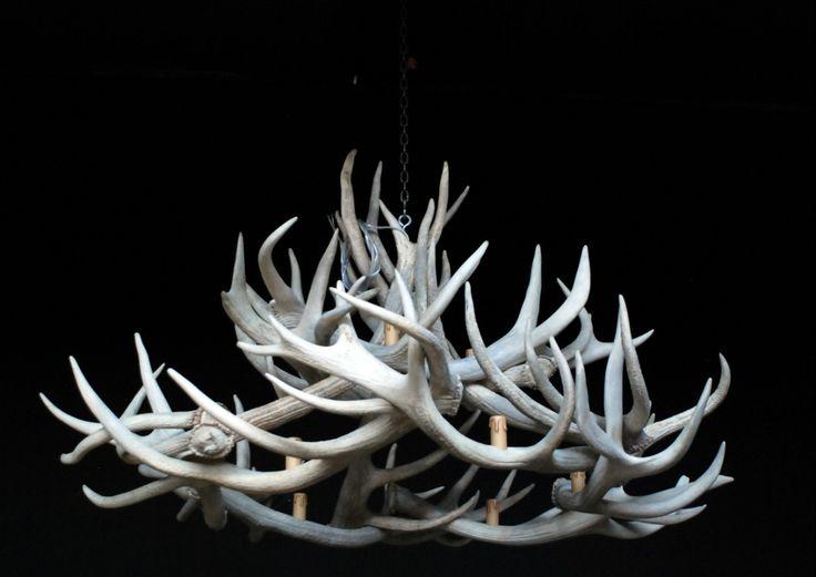 Sehr exklusive Kronleuchter von Hirsch Geweih. Die Geweihe sind natürliche weiß in Farbe, wodurch die Lampe einzigartig ist