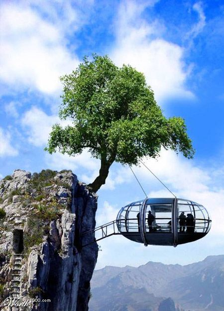 @forums.designrelated.com is a house on a wire, ladder through a stone hallway to a treehouse with such a view