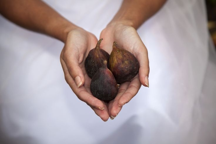 Figs | Credit: Mooi Photography