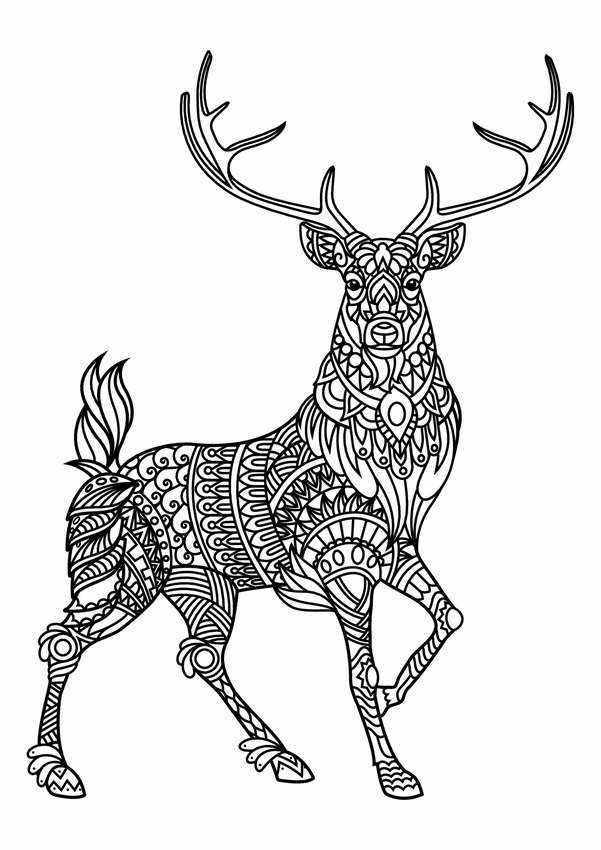 Раскраска олень – рисунки на окна к Новому году в 2020 г ...