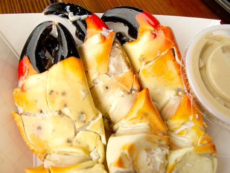 Gorgeous stone crab claws in Key West
