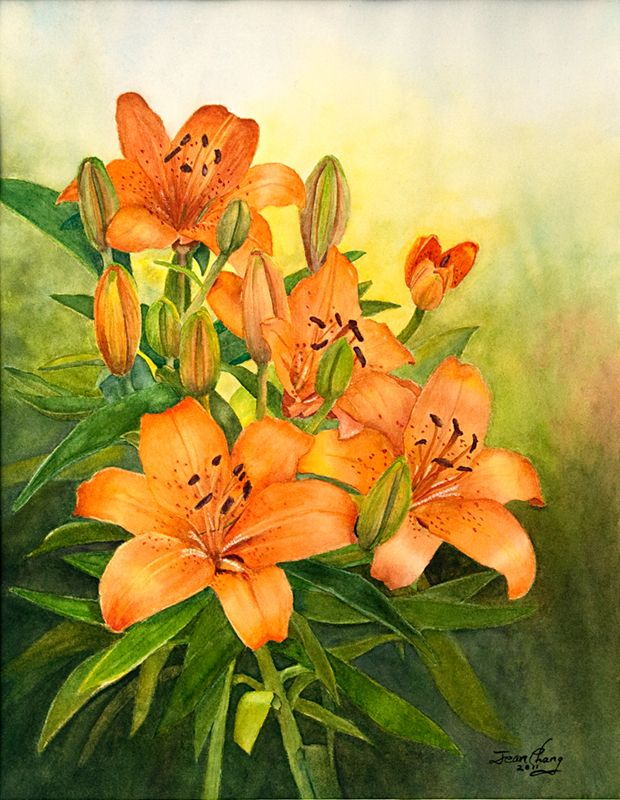 Day Lilies by Jean Chang