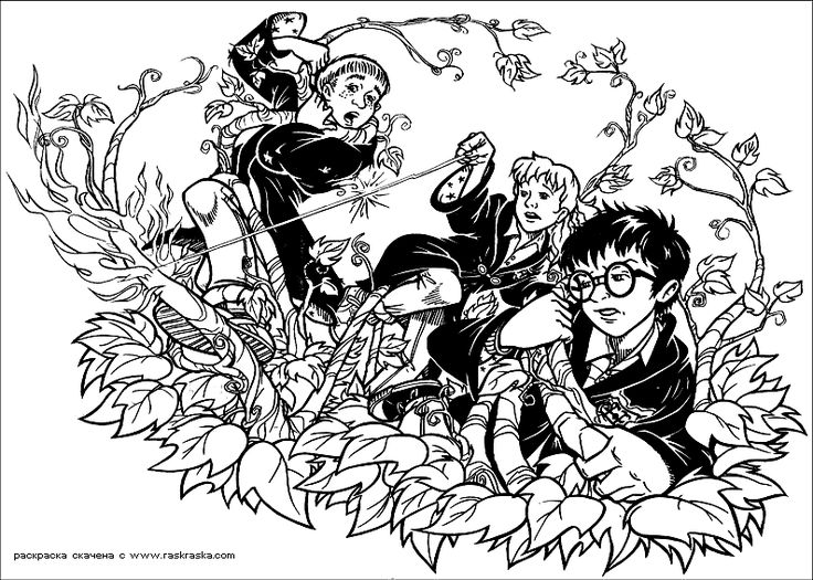 Coloring Pages For Adults Harry Potter : Best harry potter coloring pages images on pinterest