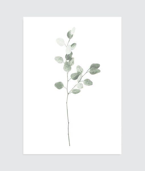 minimal botanic black/white - homemade poster