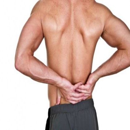 Lower Back Muscle