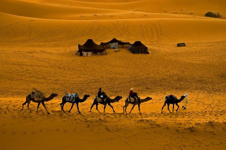Merzouga Tours  |  2 Days Tour from Marrakech to Zagora Desert  |  2 days 1 night trip from Marrakech to Zagora includes camel ride and night in desert.