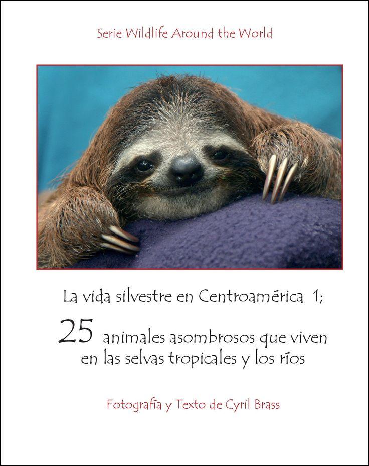 La vida silvestre en Centroamerica 1; 25 animales asombrosos que viven en als selvas tropicales y los rios. Serie Wildlife Around The World. Fotografia y Texto de Cyril Brass. Pagina 1