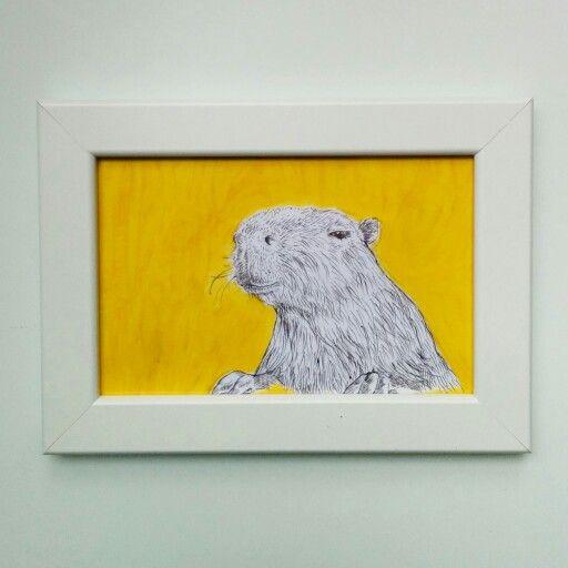 C for Capybara