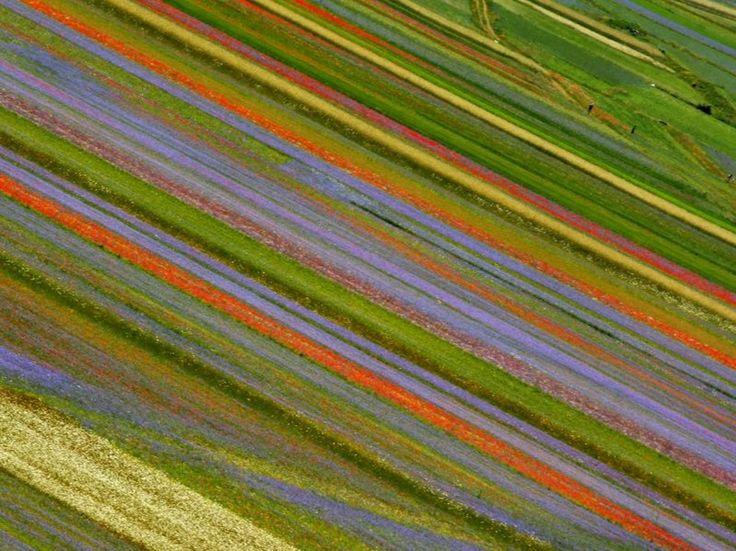 Castelluccio di Norcia 4.jpg (799×599)